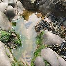 Rock Pool 3 by Edward Denyer