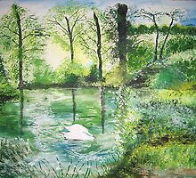 Lake in the Summer by Susie J