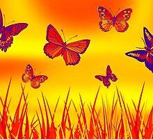 Butterflies by Vitalia