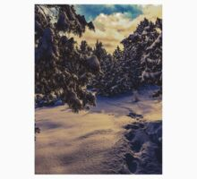 Snow In The Evening  One Piece - Short Sleeve