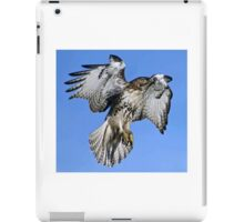 Red Tailed Hawk iPad Case/Skin