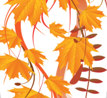 Autumn floral ornament with orange maple leaves 3 Sticker