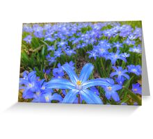 Blue bed of happiness Greeting Card