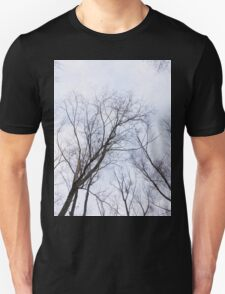 Trees in winter park T-Shirt
