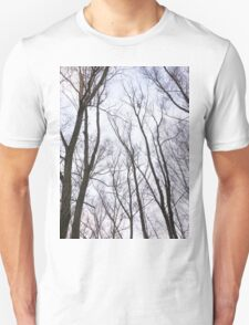 Trees in winter park 2 T-Shirt