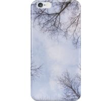 Trees in winter park 3 iPhone Case/Skin