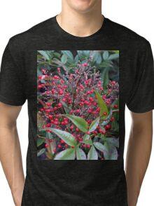 Natures Bouquet............. Tri-blend T-Shirt