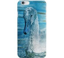 Young Pond Swan iPhone Case/Skin