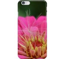 Dahlia's Wish iPhone Case/Skin