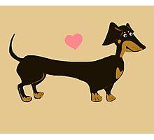 Sausage Love - Dachshund Sausage Dog Photographic Print