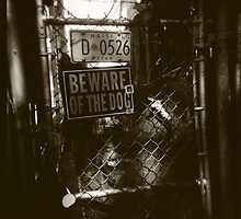 VooDoo, Haiti, Beware of Dog, New Orleans Fence by Kat Smith