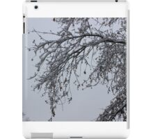 Lacey Branch iPad Case/Skin