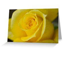 Macro yellow Greeting Card