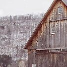 Rustic Winter by Bethany Helzer