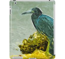 Little Blue Heron at Waters Edge Abstract Impressionism iPad Case/Skin