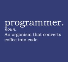 Definition - Programmer by Sandy W
