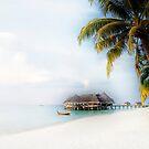 Maldives by julie08