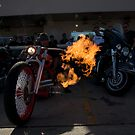 FLAME THROWER  by martin venit