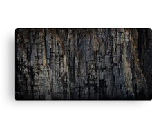 The Rock That Split Gondwana Canvas Print