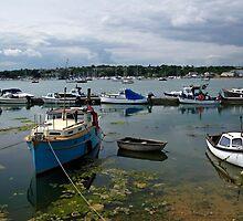 Bembridge Harbour Scene by Rod Johnson