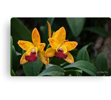 Yellow Tuesday Canvas Print