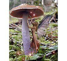 Fairy Lights Photographic Print