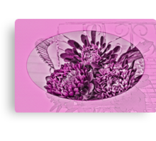 Pink And Purple Asters Canvas Print