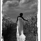 Lilly in field b+w 1 by Roger  Barnes