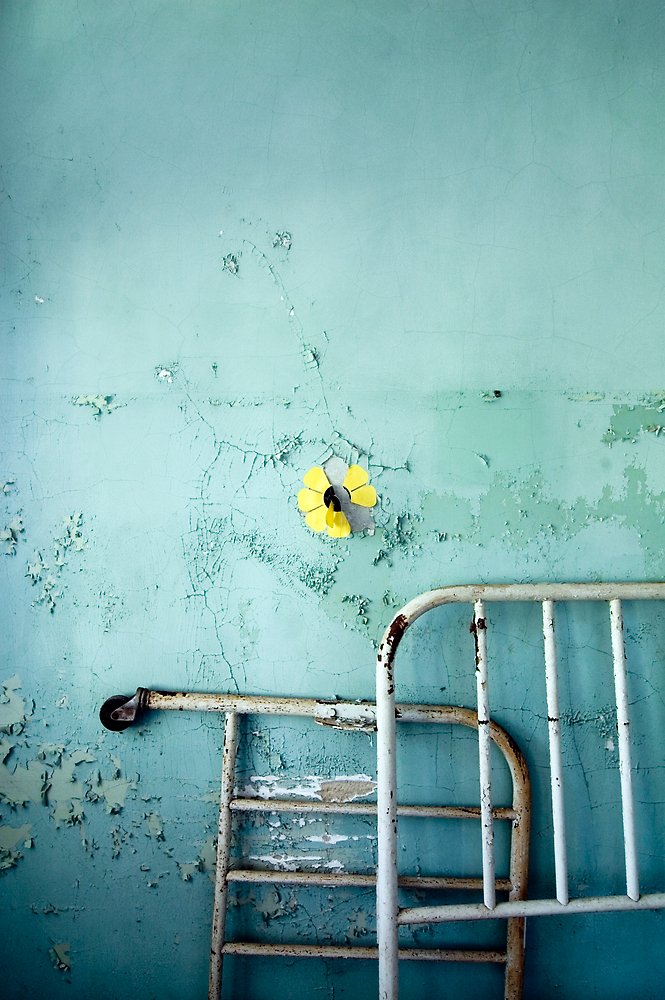 flower by rob dobi