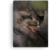 Goblin Wood Canvas Print