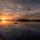Broadmeadows Estuary by Martina Fagan