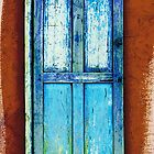 Carefree, Arizona Door by Ron Trinca