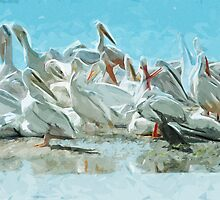 White Pelicans and Black Cormorant Abstract Impressionism by pjwuebker