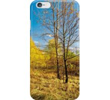 Autumn colors of nature iPhone Case/Skin
