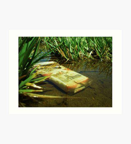 Air, Water & Land Pollution Art Print