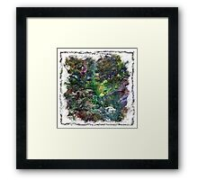 The Atlas Of Dreams - Color Plate 151 Framed Print