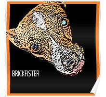 The Brickfister Poster