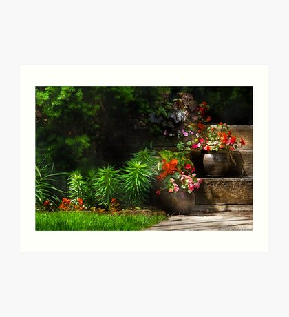Pots of plants Art Print