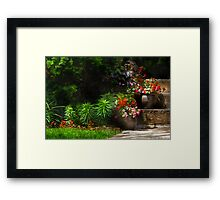 Pots of plants Framed Print