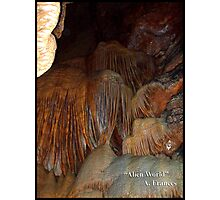 Alien World by A. Frances Photographic Print