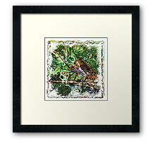 The Atlas Of Dreams - Color Plate 152 Framed Print