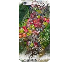 The Atlas Of Dreams - Color Plate 153 iPhone Case/Skin