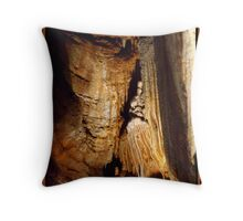 Towers Throw Pillow