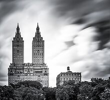 Central Park, NYC by fernblacker
