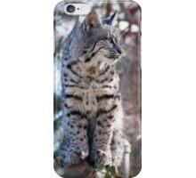 Alert kitty iPhone Case/Skin