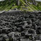 Causeway in Green by anorth7