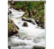 Running stream in the alps.  iPad Case/Skin