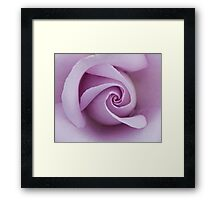 Sterling Silver rose closeup Framed Print