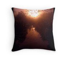 Sunrise Spider Web Throw Pillow