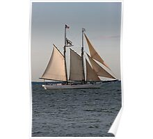 Wintry Sail Poster